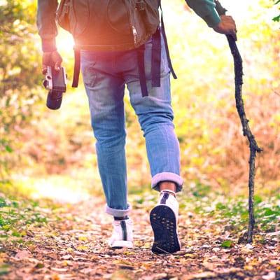 Ein Wanderer in einem Wald mit einer Kamera